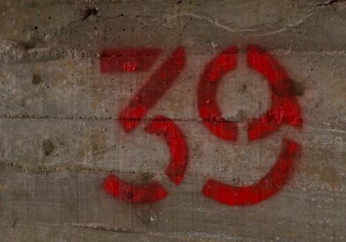 RDSC_3310
